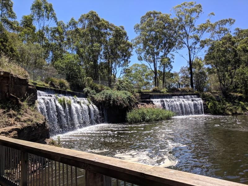 Central Gardens Reserve