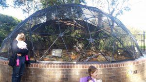 Bird Aviary full of natives like kookaburras