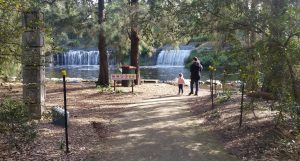 Waterfall at Central Gardens in Merrylands