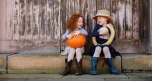 Spring Harvest Festival | Elizabeth Farm, Parramatta @ Elizabeth Farm | Rosehill | New South Wales | Australia