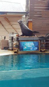 Taronga Park Zoo
