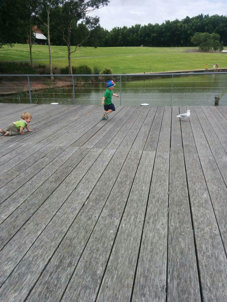 Bicentennial Park: Lake