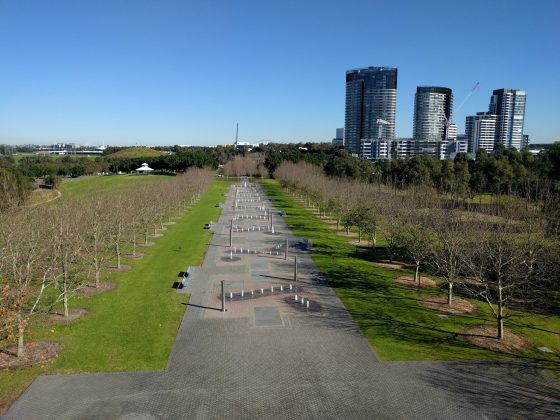 Bicentennial Park Tower Treillage Viewing Platform