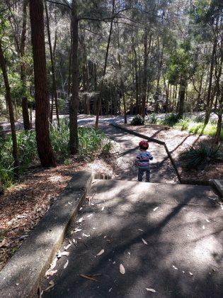 Bicentennial Park bushwalk