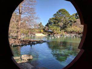 Auburn Botanic Gardens Open Day | Auburn @ Auburn Botanic Gardens | Auburn | New South Wales | Australia