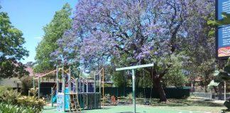Noller Park