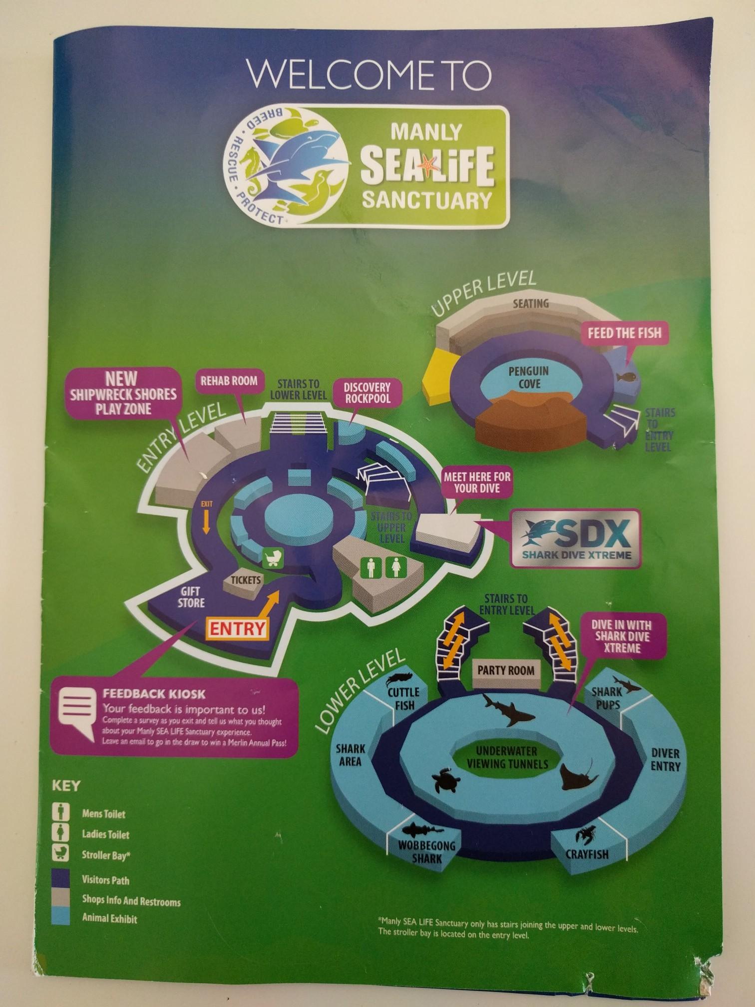 Manly Aquarium Sea Life Sanctuary Parraparents Thailand Et Ticket Ocean World Only Adult