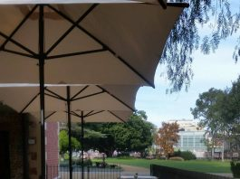 Park Playgrounds with Cafes Nearby The Grounds Keeper Cafe Parramatta