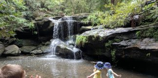 Balaka Falls Hunts Creek Reserve Carlingford