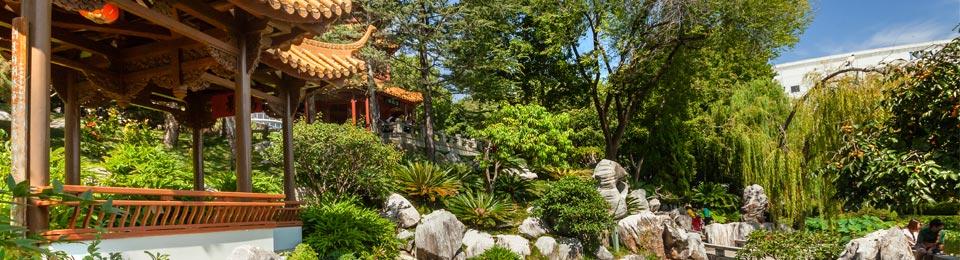 Chinese Gardens Sydney Cafe