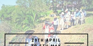 What's on 29th April to 5th May