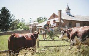 Family Fair | Rouse Hill House and Farm @ Rouse Hill House and Farm | Rouse Hill | New South Wales | Australia