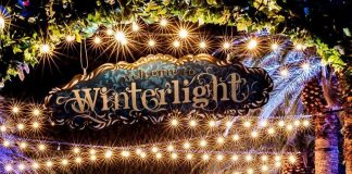 Winterlight family guide 2017