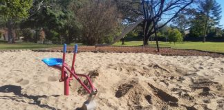 Pinetree Park