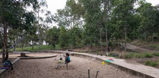 Lizard Log Western Sydney Parklands
