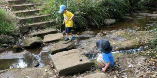 Subiaco Creek Reserve Rydalmere