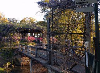 Wistaria Gardens