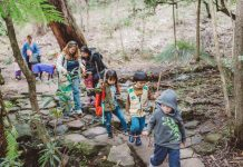 kid friendly bushwalks spring school holidays guide