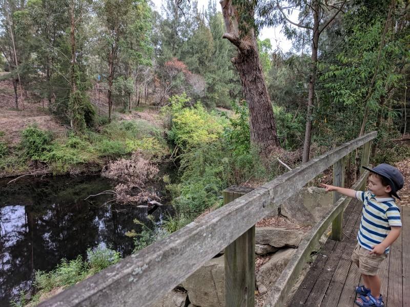 Robin Hood Park Northmead