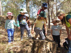 Bush Babies Nature Ramble | North Parramatta @ Lake Parramatta | North Parramatta | New South Wales | Australia