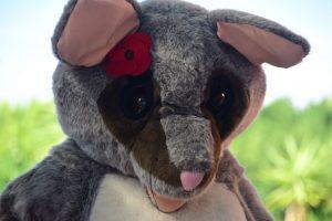 Poppy in the Park | Blaxland Riverside Park, Newington @ Blaxland Riverside Park Kiosk | Sydney | New South Wales | Australia