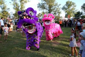 Blacktown Lunar New Year | Nurragingy Reserve @ Nurragingy Reserve | Doonside | New South Wales | Australia