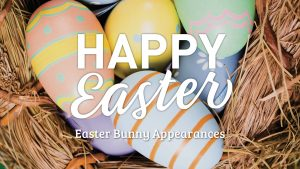 Easter Bunny | Auburn Megamall @ Primewest Auburn Megamall | Auburn | New South Wales | Australia