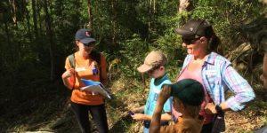Environmental Treasure Hunt | Winston Hills @ Third Settlement Reserve | Winston Hills | New South Wales | Australia