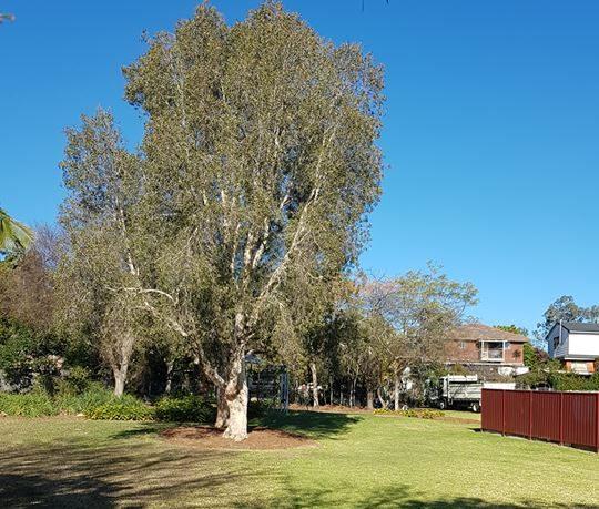 Talinga Park Carlingford