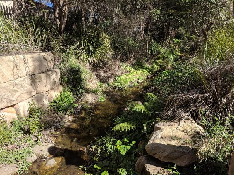 Terrys Creek walk Carlingford to Eastwood
