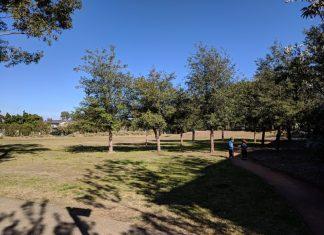 Blankers-Koen Park Newington
