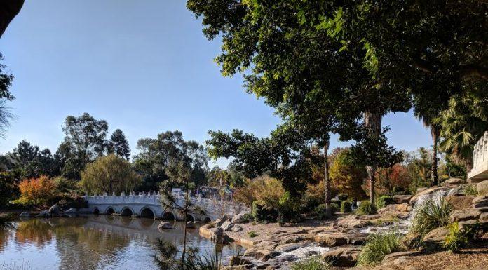 Nurragingy Reserve