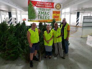 Norwest Sunrise Rotary Club Christmas Trees | Castle Hill @ Bunnings Castle Hill | Castle Hill | New South Wales | Australia