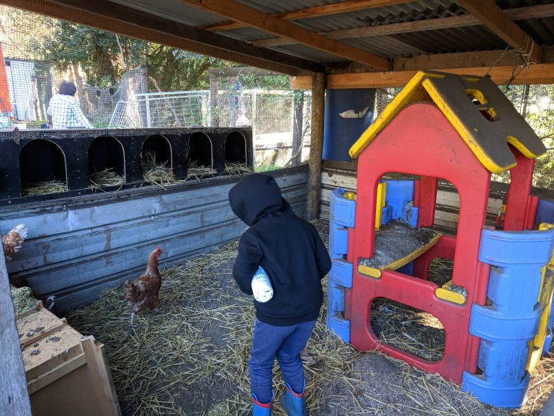 Watkins Family Farm