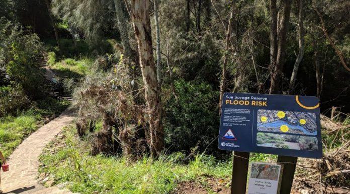 native birds walking trail parraparents