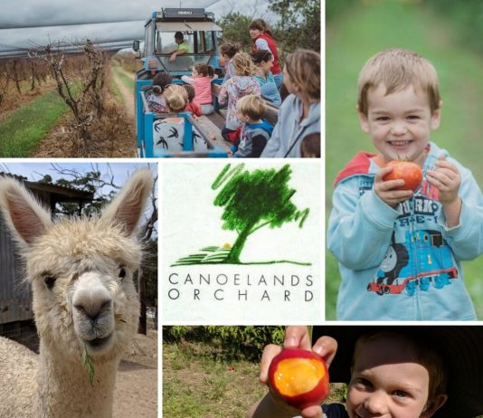WIN Free Entry to Pick Your Own Fruit at Canoelands Orchard