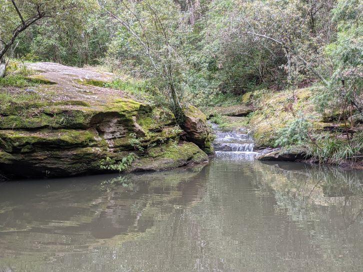 Water Dragon Way Winston Hills