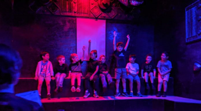 Code Red Laser Tag Rosehill