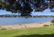 Cabarita Park Beach