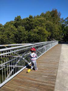 Bicentennial Park: Powells Creek bridge