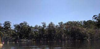 Lake Parramatta Reserve North Parramatta