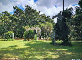 Sir Joseph Banks Pleasure Gardens (Photo Credit: Postcard Sydney)