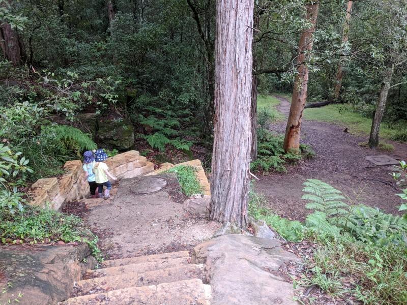 Balaka Falls Hunts Creek Reserve Carlingford