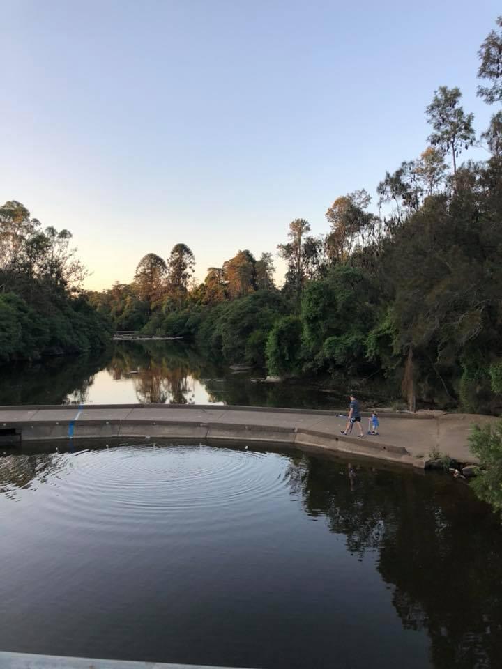 Bat Night Parramatta Park