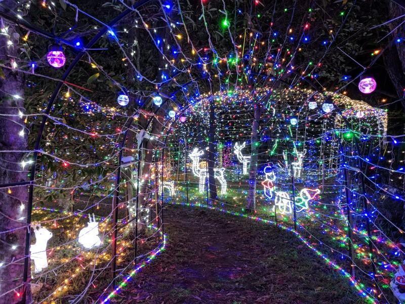 Christmas lights ParraParents articles