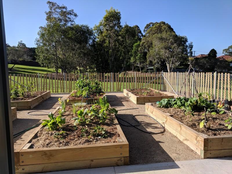 Community Garden Bruce Miller Reserve