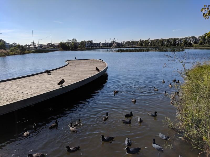 Lakes Edge Park The Ponds