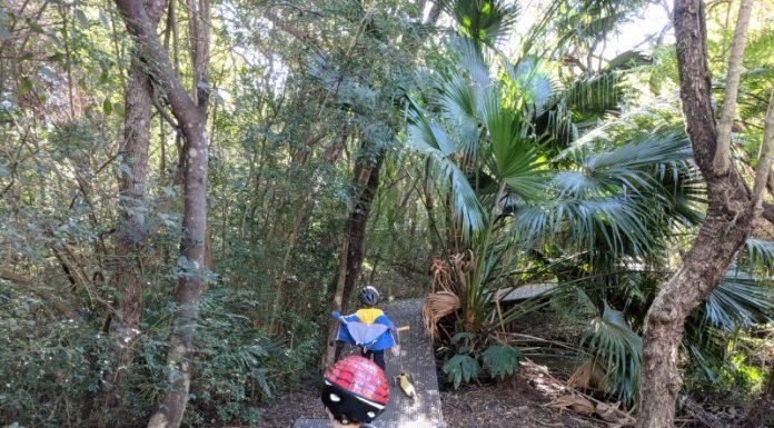 Glades Bay