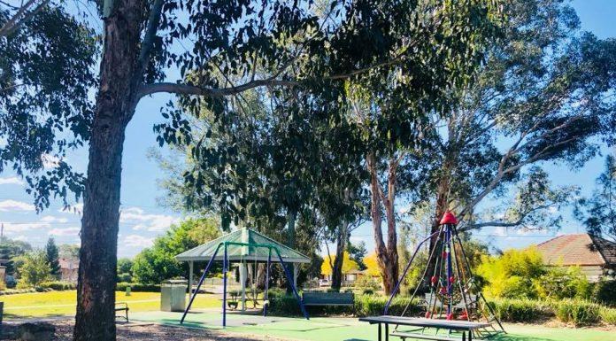 Ron Hill Park Toongabbie