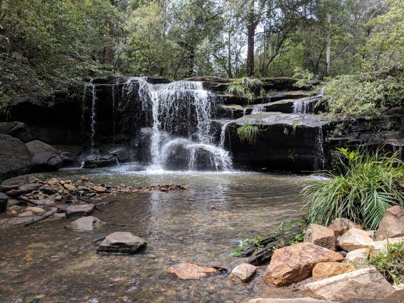 Hunts Creek Reserve Carlingford